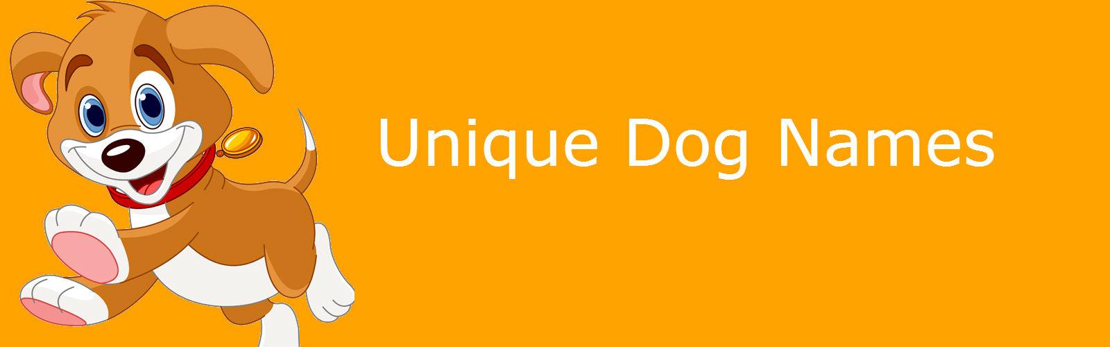 Dog Names Female Unique