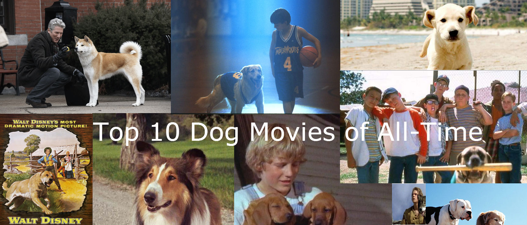 Top 10 movies of all time top 10 dog movies of all time
