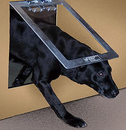 Dog House Door