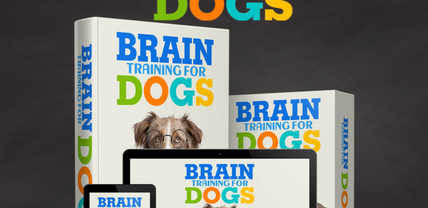 Brain Training 4 Dogs  Obedience Training Commands Cyber Week Coupons 2020